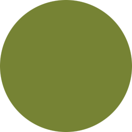 4079 - Olive green